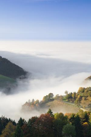 https://imgc.allpostersimages.com/img/posters/view-from-the-wiedener-eck-to-the-rhine-plain-at-fog-black-forest-baden-wurttemberg-germany_u-L-Q1EY8VI0.jpg?artPerspective=n