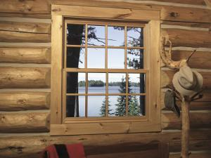View from Window in Log Cabin