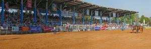View of Arcadia All-Florida Championship Rodeo, Arcadia, DeSoto County, Florida, USA