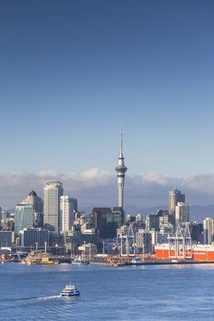 https://imgc.allpostersimages.com/img/posters/view-of-auckland-skyline-auckland-north-island-new-zealand-pacific_u-L-PQ8SMN0.jpg?artPerspective=n