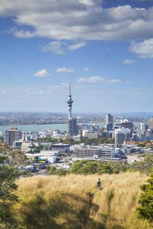 https://imgc.allpostersimages.com/img/posters/view-of-auckland-with-man-hiking-on-mount-eden-auckland-north-island-new-zealand-pacific_u-L-PQ8MZN0.jpg?p=0