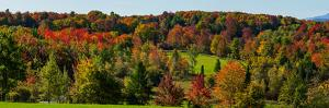 View of autumn trees on a landscape, Brome, Quebec, Canada