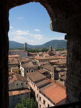 View of Buildings Through Window on Upper Level of Torre Guinigi, Lucca, Tuscany, Italy