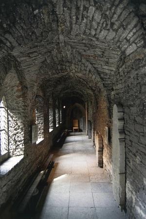 https://imgc.allpostersimages.com/img/posters/view-of-corridor-dominican-monastery_u-L-PP9VWU0.jpg?p=0