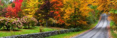 View of dirt road in autumn, Sutton, Quebec, Canada