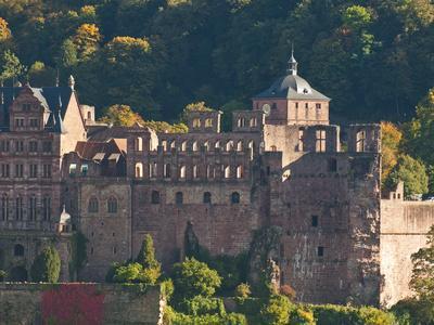https://imgc.allpostersimages.com/img/posters/view-of-heidelberg-s-old-town-and-heidelberg-castle-from-the-philosophenweg-heidelberg-germany_u-L-PHAR610.jpg?p=0