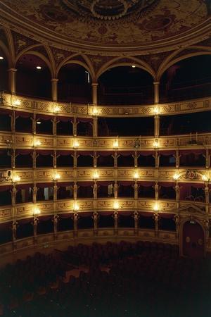 https://imgc.allpostersimages.com/img/posters/view-of-interior-of-giuseppe-verdi-theatre_u-L-PP9V430.jpg?artPerspective=n