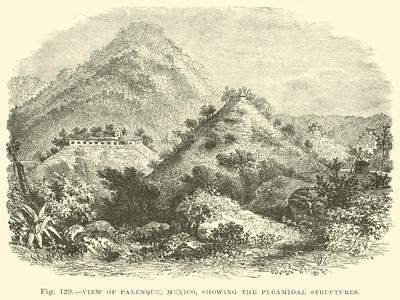 https://imgc.allpostersimages.com/img/posters/view-of-palenque-mexico-showing-the-pyramidal-structures_u-L-PPWD5W0.jpg?artPerspective=n