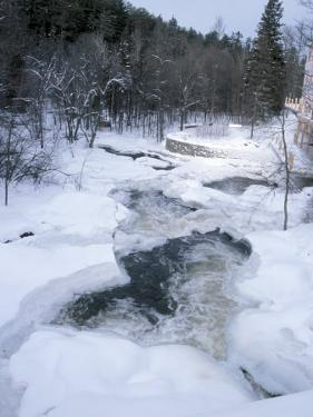 View of Picturesque Winter Scenery with a Frozen River and Snow Covered Trees