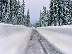 View of snow covered road, Willamette National Forest, Linn County, Oregon, USA