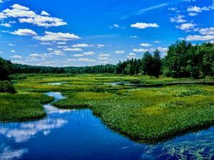 View of the Middle Branch Moose River, Adirondack Mountains, New York State, USA