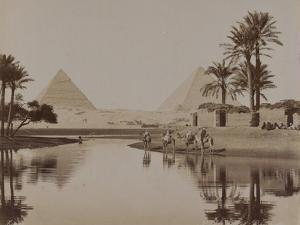 View of the Pyramids, Egypt, 1893