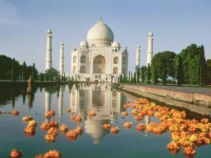 View of the Taj Mahal