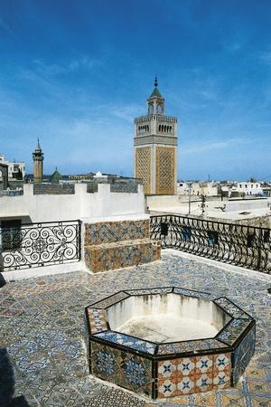 https://imgc.allpostersimages.com/img/posters/view-of-tunis-and-minaret-of-al-zaytuna-mosque-tunis-tunisia_u-L-PW2YXK0.jpg?p=0