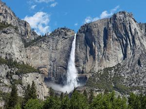 View of Yosemite Falls in Spring, Yosemite National Park, California, USA