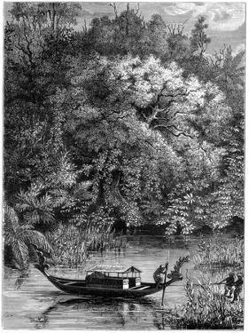 View on the Dodinga River, New Guinea, 1877