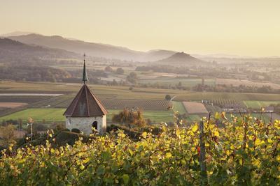 https://imgc.allpostersimages.com/img/posters/view-over-ehrenstetten-oelbergkapelle-chapel-to-staufen-castle_u-L-PWFS700.jpg?artPerspective=n