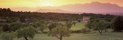 https://imgc.allpostersimages.com/img/posters/view-towards-sierra-de-tramuntana-mountains-near-muro-majorca-balearic-islands-spain_u-L-P2QWY90.jpg?p=0