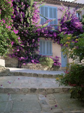https://imgc.allpostersimages.com/img/posters/village-house-covered-with-bougainvillea-grimaud-var-cote-d-azur-provence-france_u-L-P1THAL0.jpg?p=0