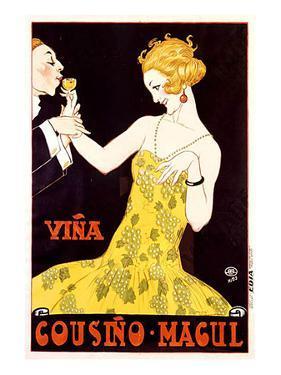 Vina Cousino Magul Wine