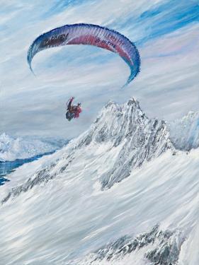 Antarctic Flier, 2015 by Vincent Alexander Booth
