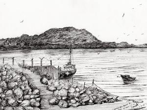 Iona from Mull, Scotland, 2007 by Vincent Alexander Booth