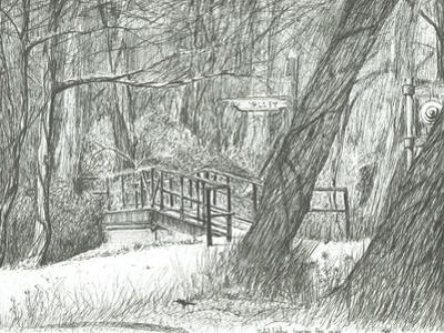 The old metal bridge, Bramhall park, 2004 by Vincent Alexander Booth