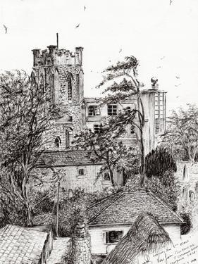 View from St Catherines School, Ventnor, 2011 by Vincent Alexander Booth