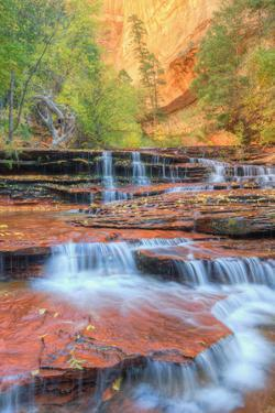 Approaching The Subway in Autumn, Zion National Park by Vincent James