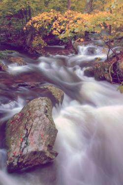 Autmn at Kaaterskill Creek, Catskill Mountains, New York by Vincent James