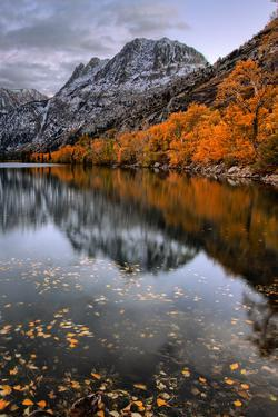 Autmn Reflections at Silver Lake, June Lake, Eastern Sierras California by Vincent James