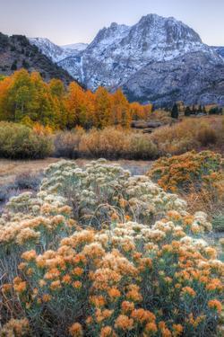 Autumn at June Lake Loop, Sierra Nevada by Vincent James