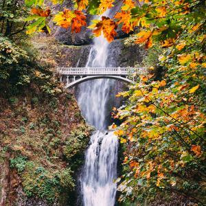 Autumn at Multnomah Falls, Square, Hood River, Columbia River Gorge, Oregon by Vincent James