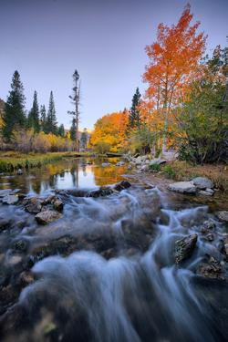 Autumn Bishop Creek Canyon, Eastern Sierras, California by Vincent James
