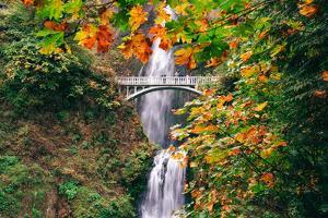 Autumn Frame at Multnomah Falls, Waterfall Columbia River Gorge, Oregon by Vincent James