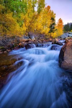 Autumn in Bishop Creek, Mountains, Eastern Sierras by Vincent James