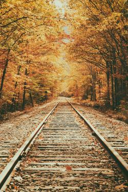 Autumn Railroad, New Engalnd Fall Foilage by Vincent James