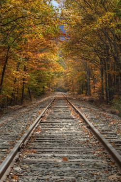 Autumn Railroad Tracks, White Mountain, New Hampshire by Vincent James
