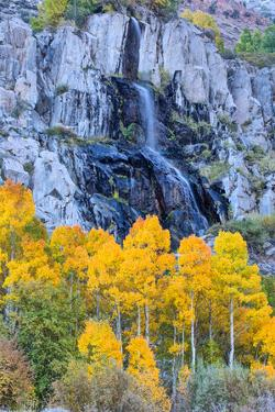 Autumn Waterfall, Bishop Creek Canyon, Eastern Sierras, California by Vincent James