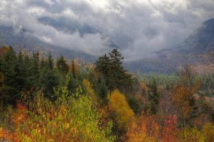 Autumn Wonderland at White Mountain, New Hampshire by Vincent James