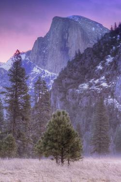 Before Dawn at Half Dome, Yosemite Valley by Vincent James