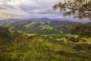 Blustery Afternoon Landscape, Mount Diablo by Vincent James