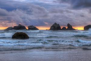 Cat and Kittens at Sunset, Bandon Beach, Oregon Coast by Vincent James
