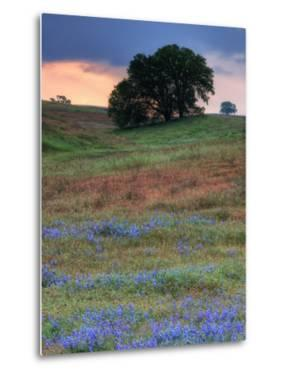 Central Valley Storm Late Afternoon by Vincent James