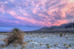 Cloudscape Sunset at Devil's Cornfield, Death Valley by Vincent James