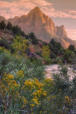 Days End from the Pa' Rus Trail, Zion by Vincent James