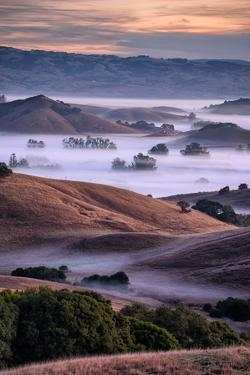 Dreamy Country Hills and Fog, Petaluma, Sonoma, Bay Area by Vincent James