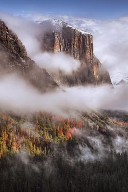 Dreamy Morning at El Capitan, Yosemite Valley by Vincent James