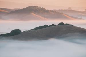 Ethereal Morning, Petaluma Marin County, Bay Area by Vincent James