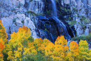 Fall Color and Waterfall Bishop Creek Canyon Eastern Sierras California by Vincent James